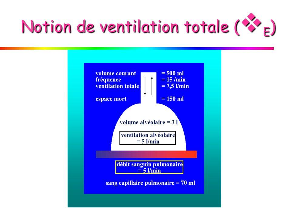Notion de ventilation totale (E)
