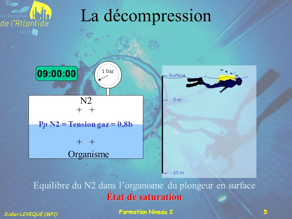 Equilibre du N2 dans l'organisme du plongeur en surface