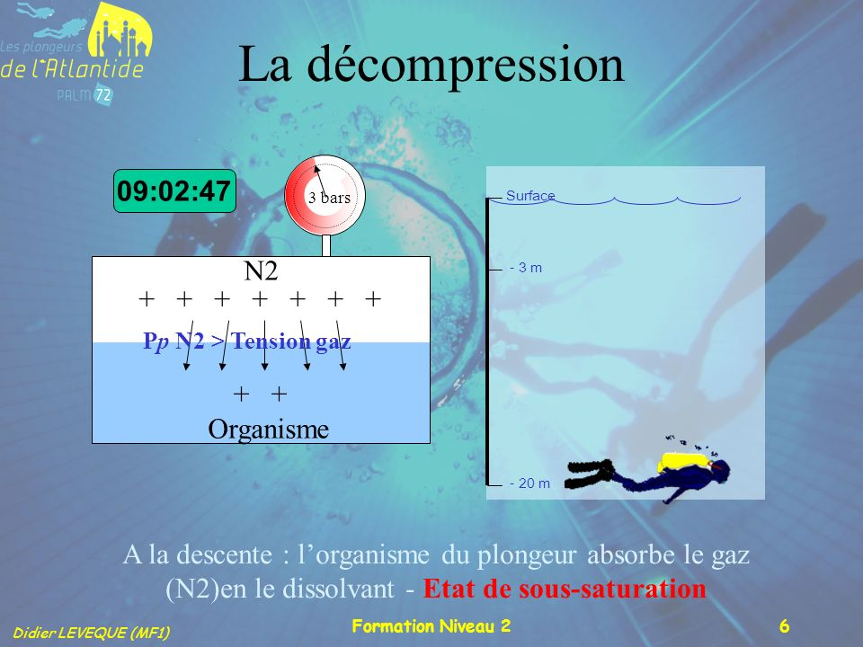 La décompression 09:02:47 N2 + + + + + + + + + Organisme
