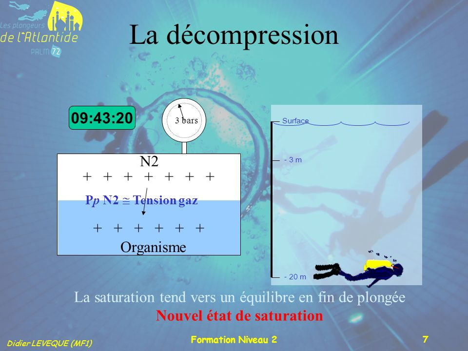 La décompression 09:43:20 N2 + + + + + + + + + + + + + Organisme