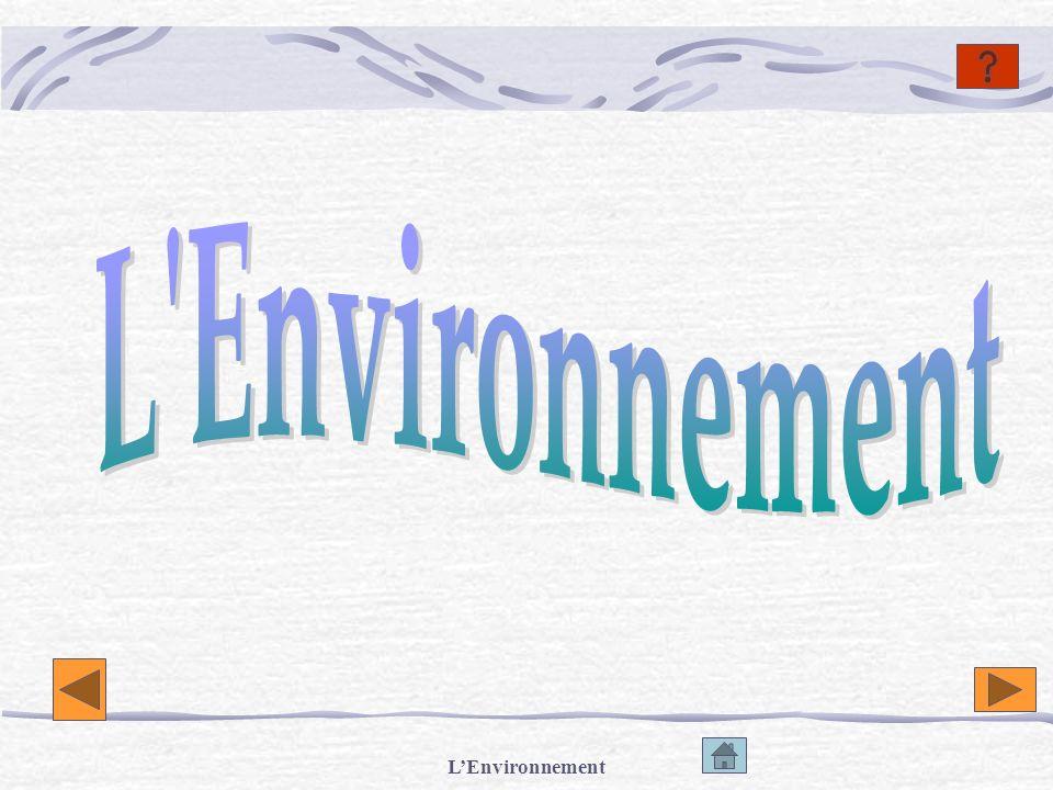 L Environnement L'Environnement