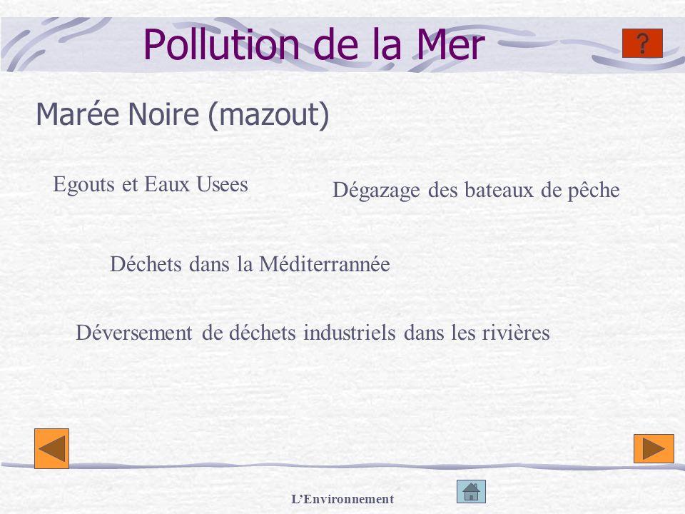 Pollution de la Mer Marée Noire (mazout) Egouts et Eaux Usees