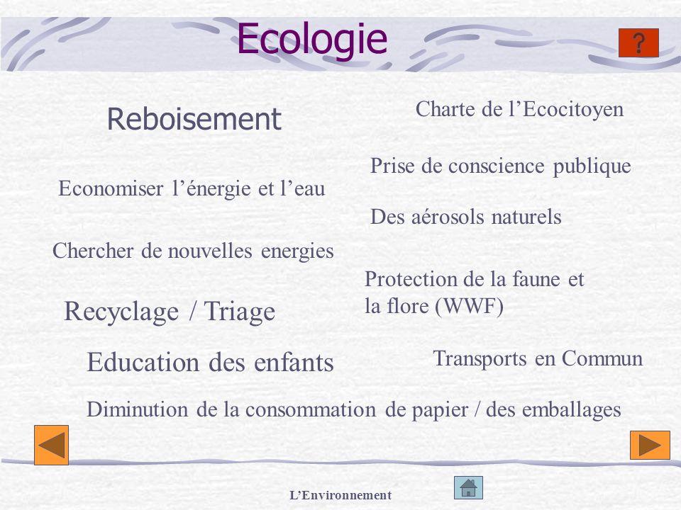 Ecologie Reboisement Recyclage / Triage Education des enfants