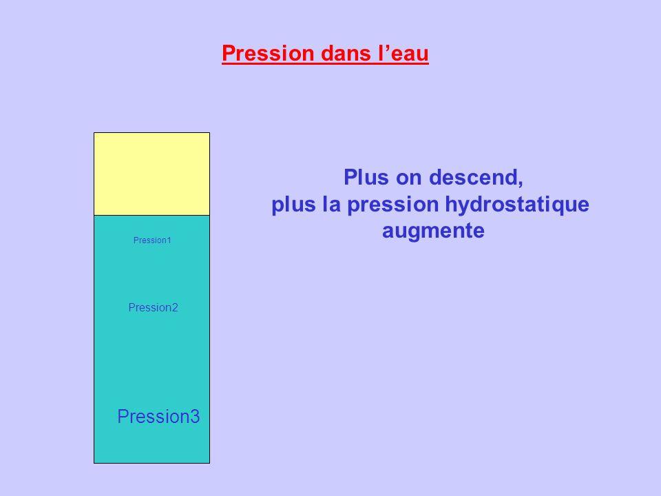 plus la pression hydrostatique