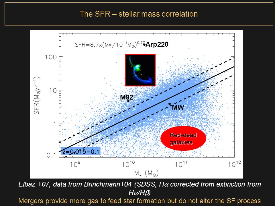 The SFR – stellar mass correlation