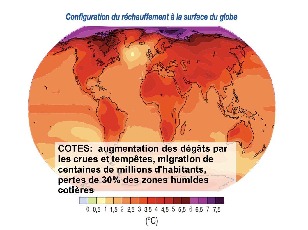COTES: augmentation des dégâts par les crues et tempêtes, migration de centaines de millions d habitants, pertes de 30% des zones humides cotières
