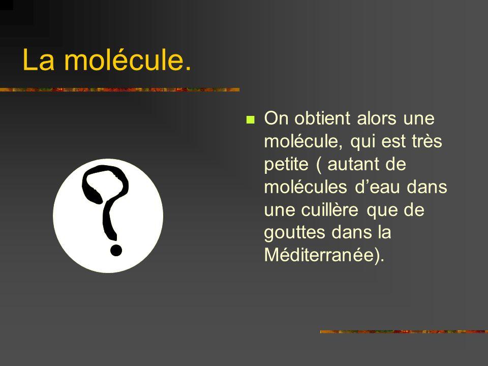 La molécule.