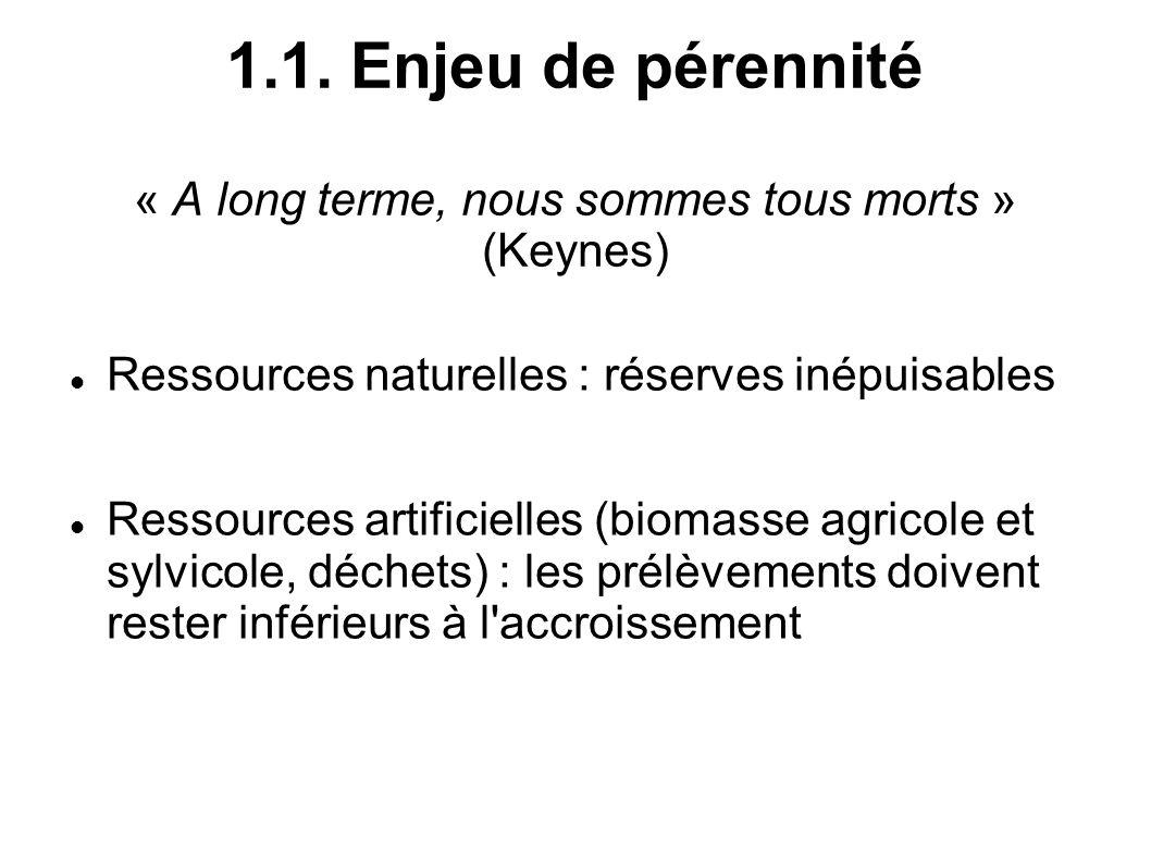 1.1. Enjeu de pérennité « A long terme, nous sommes tous morts » (Keynes)