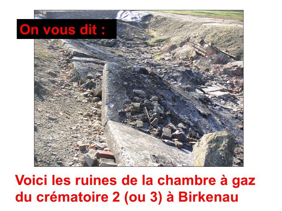 On vous dit : Voici les ruines de la chambre à gaz du crématoire 2 (ou 3) à Birkenau