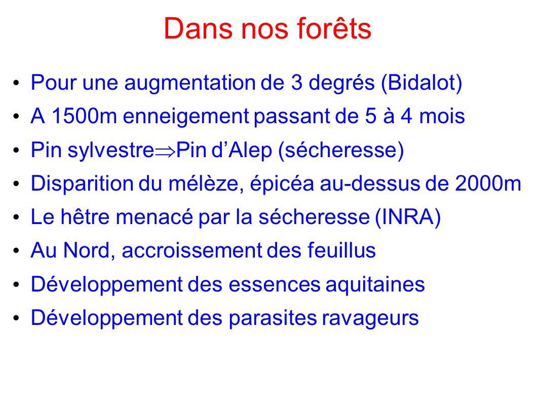 Dans nos forêts Pour une augmentation de 3 degrés (Bidalot)