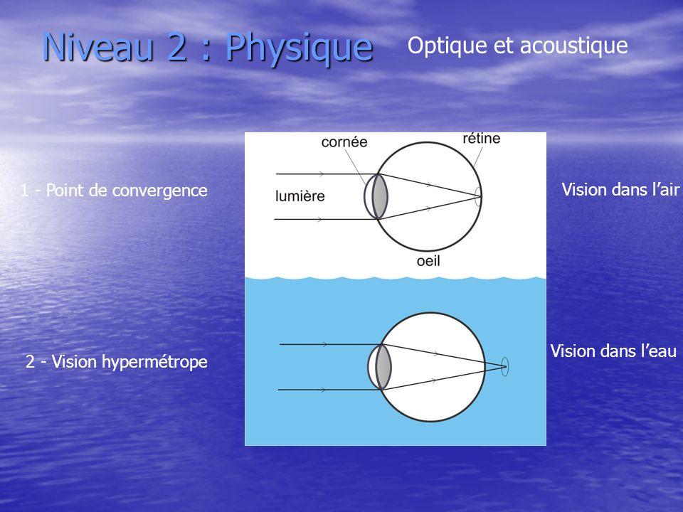 Niveau 2 : Physique Optique et acoustique 1 - Point de convergence