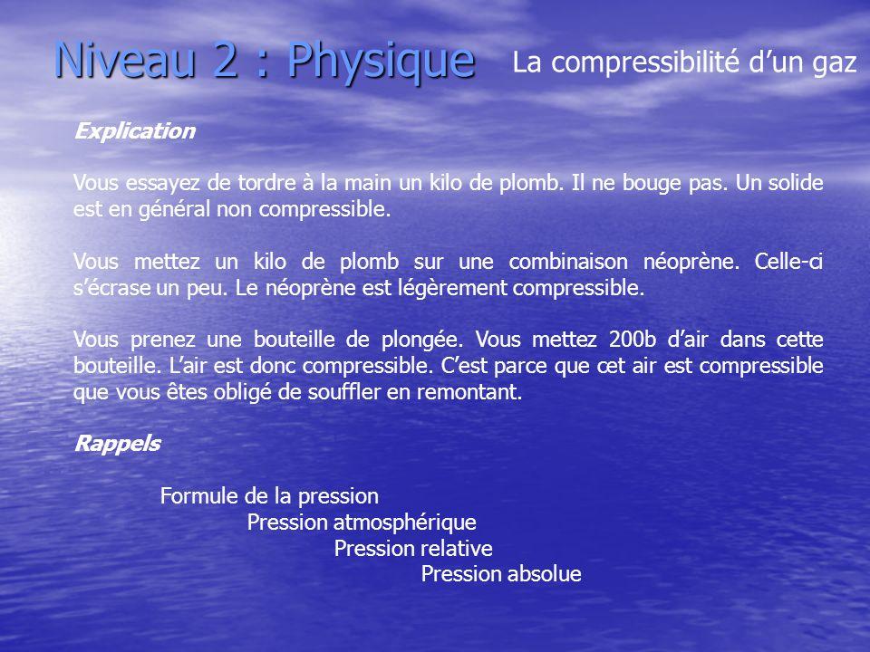 Niveau 2 : Physique La compressibilité d'un gaz Explication