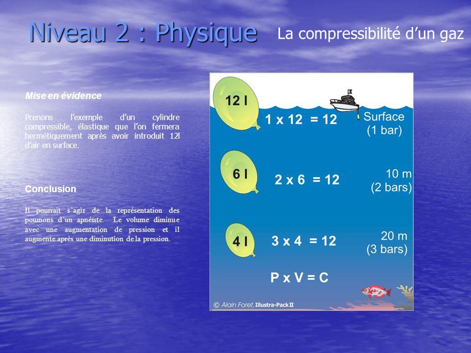 Niveau 2 : Physique La compressibilité d'un gaz Mise en évidence