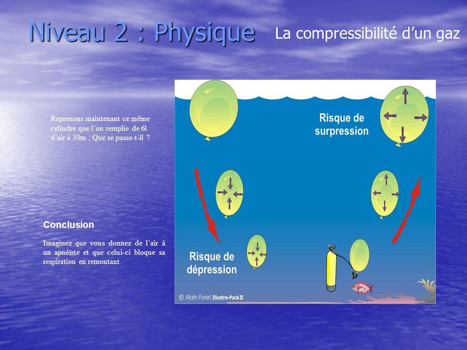 Niveau 2 : Physique La compressibilité d'un gaz Conclusion