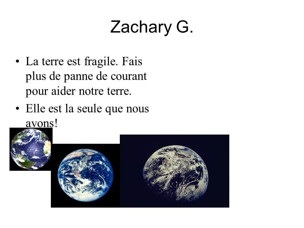 Zachary G. La terre est fragile. Fais plus de panne de courant pour aider notre terre.
