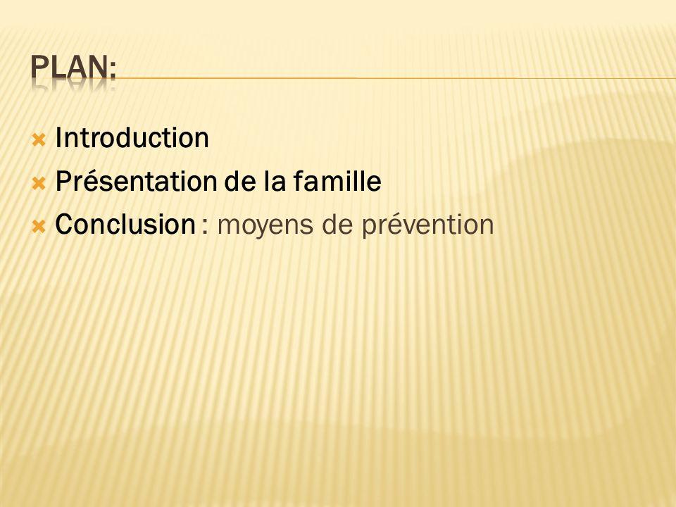 PLAN: Introduction Présentation de la famille