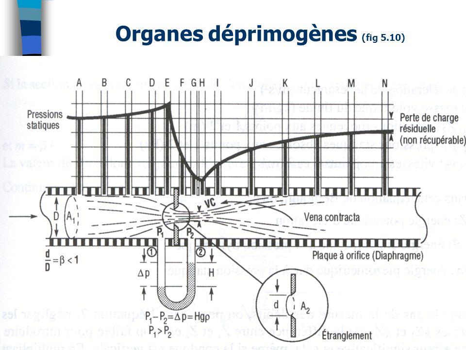 Organes déprimogènes (fig 5.10)