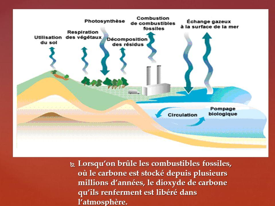 Lorsqu'on brûle les combustibles fossiles, où le carbone est stocké depuis plusieurs millions d'années, le dioxyde de carbone qu'ils renferment est libéré dans l'atmosphère.