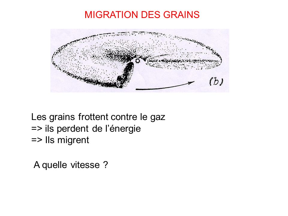 MIGRATION DES GRAINS Les grains frottent contre le gaz => ils perdent de l'énergie. => Ils migrent.