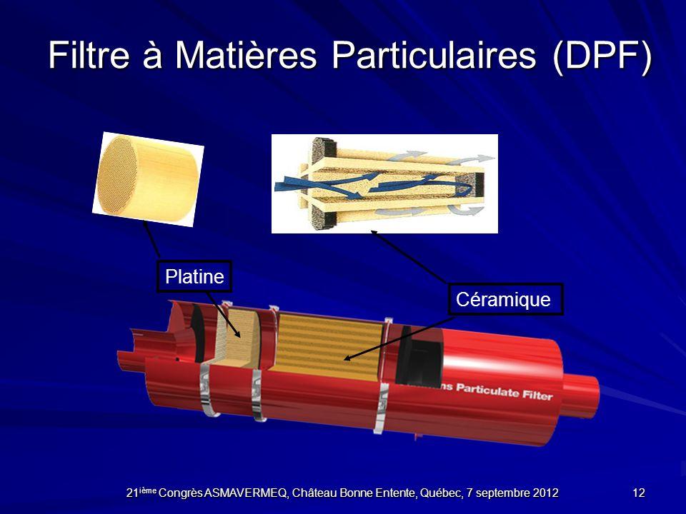 Filtre à Matières Particulaires (DPF)