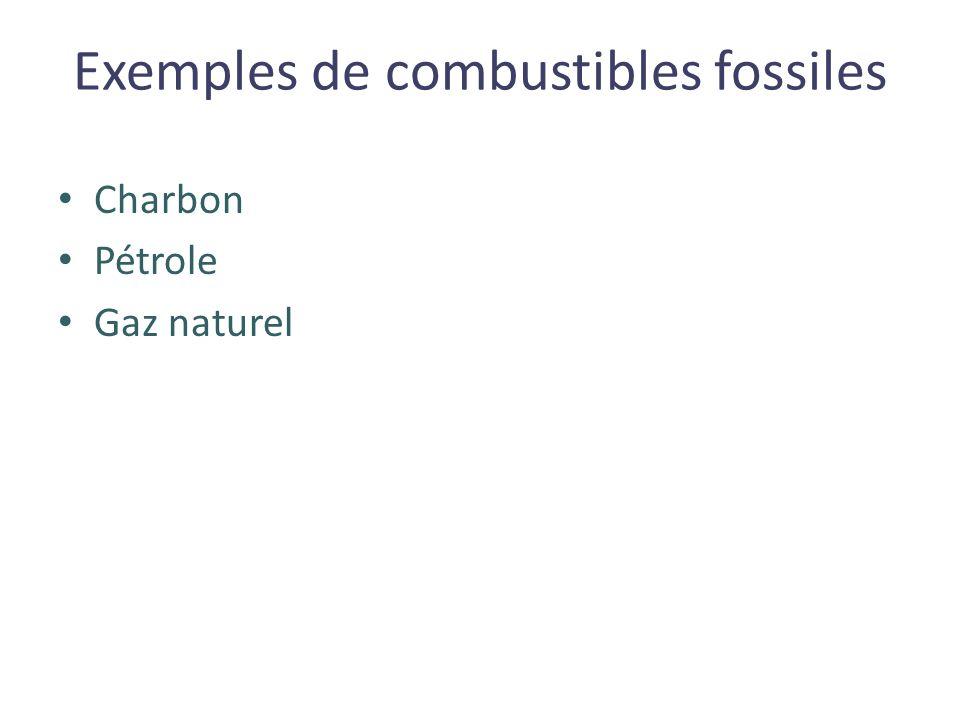 Exemples de combustibles fossiles