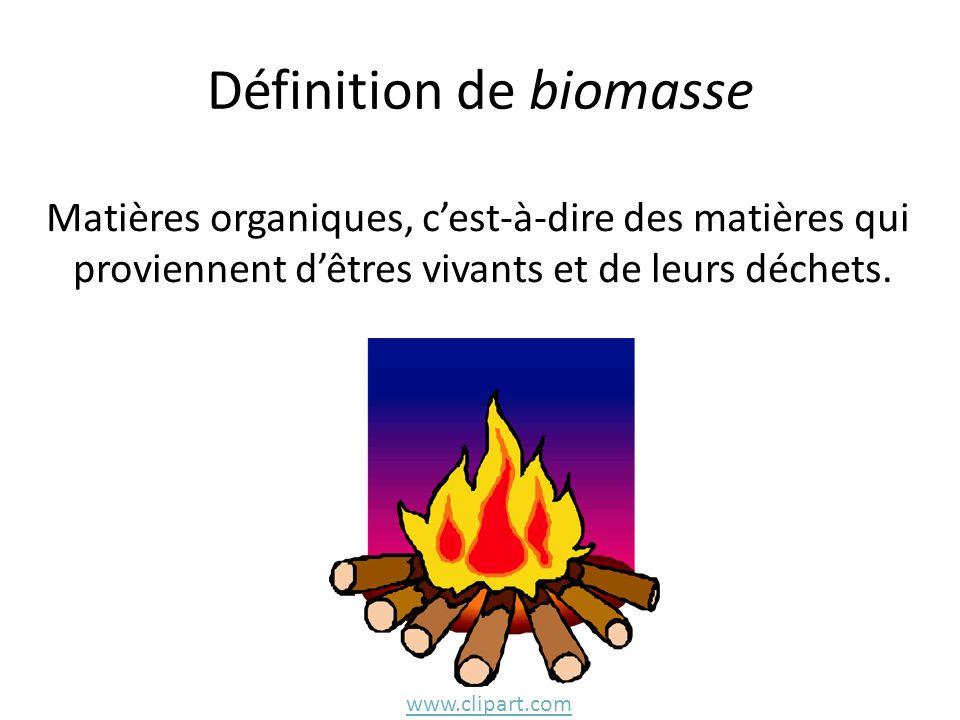Définition de biomasse