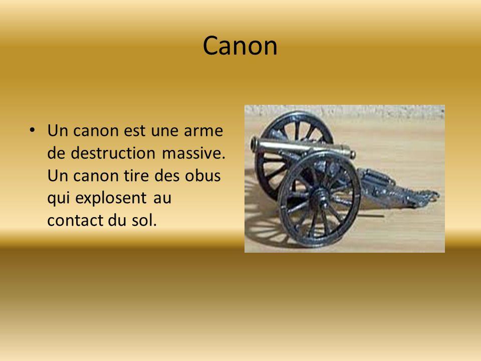 Canon Un canon est une arme de destruction massive.