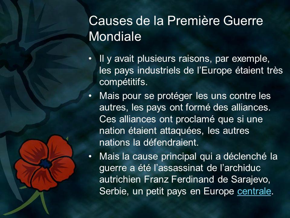 Causes de la Première Guerre Mondiale