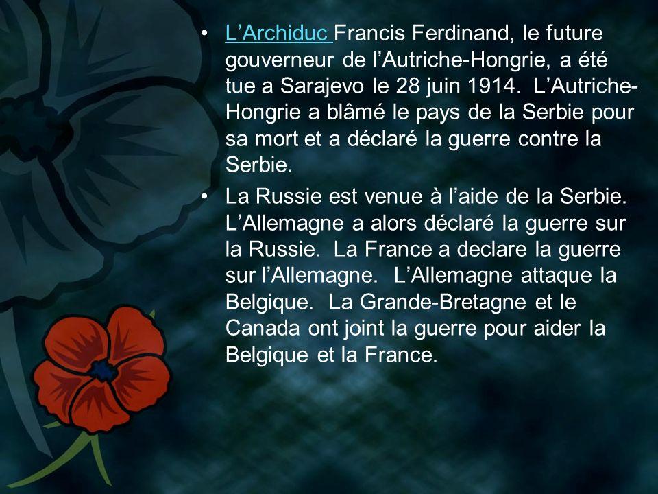 L'Archiduc Francis Ferdinand, le future gouverneur de l'Autriche-Hongrie, a été tue a Sarajevo le 28 juin 1914. L'Autriche-Hongrie a blâmé le pays de la Serbie pour sa mort et a déclaré la guerre contre la Serbie.
