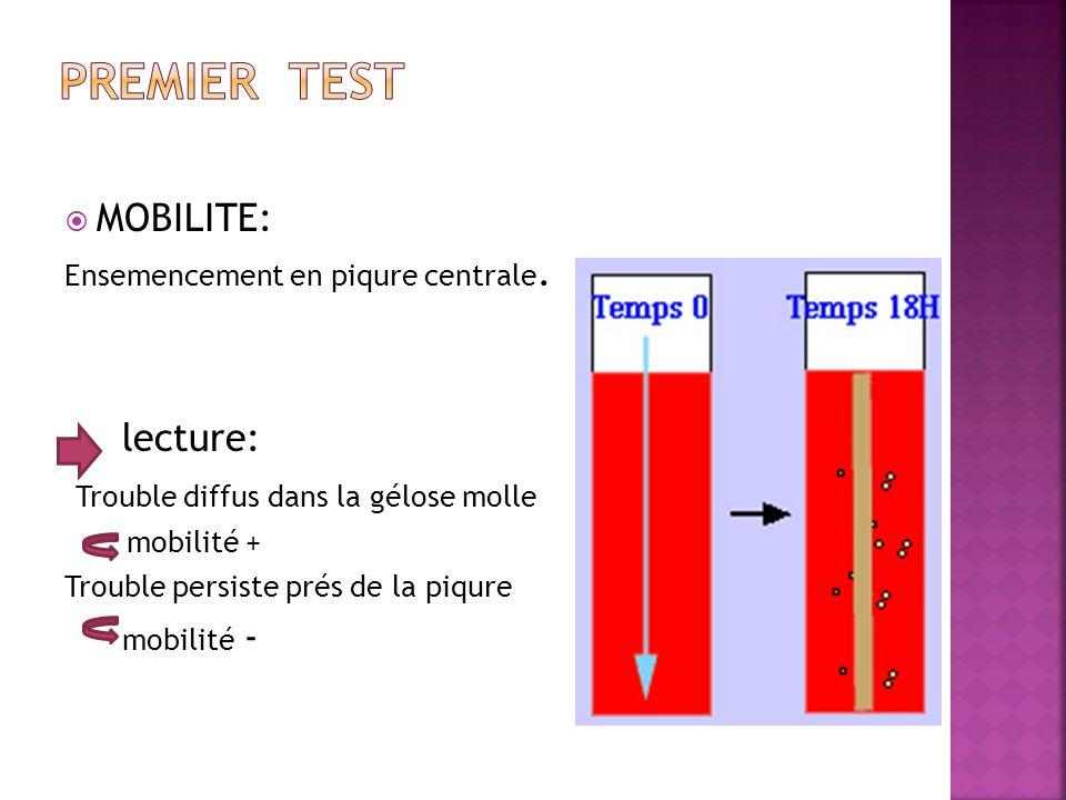 PreMier test MOBILITE: lecture: Trouble diffus dans la gélose molle