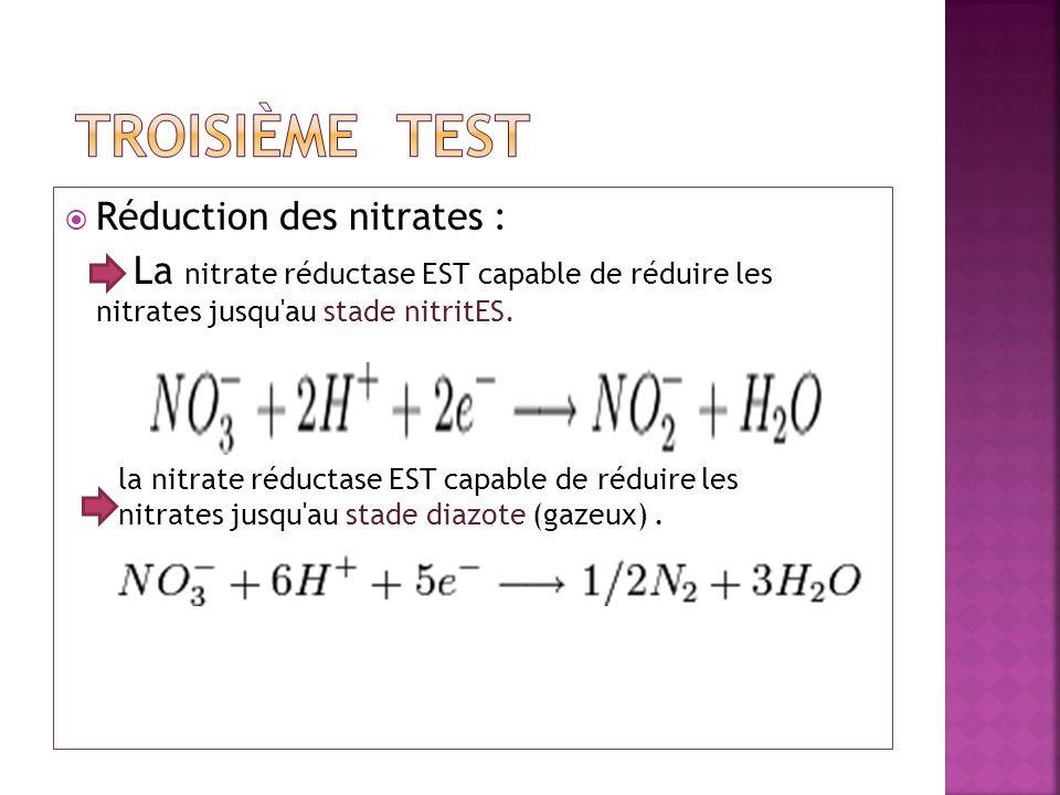 TROISIÈME test Réduction des nitrates :