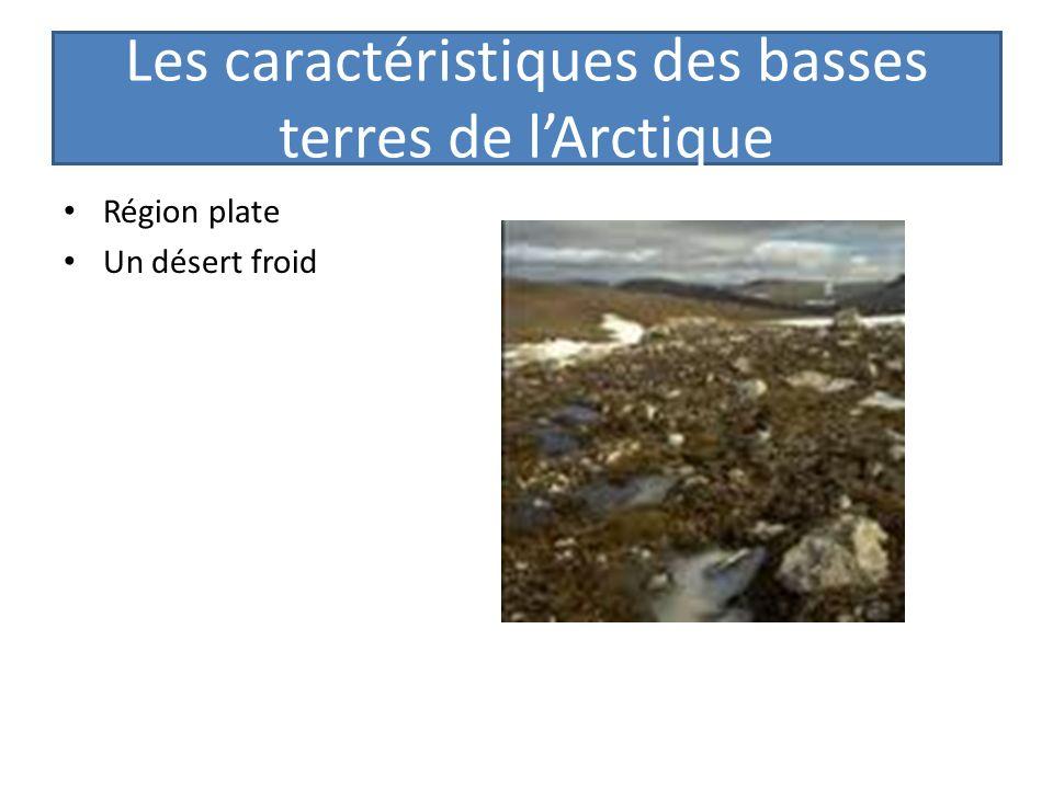 Les caractéristiques des basses terres de l'Arctique