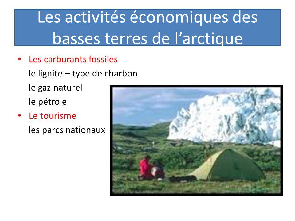 Les activités économiques des basses terres de l'arctique
