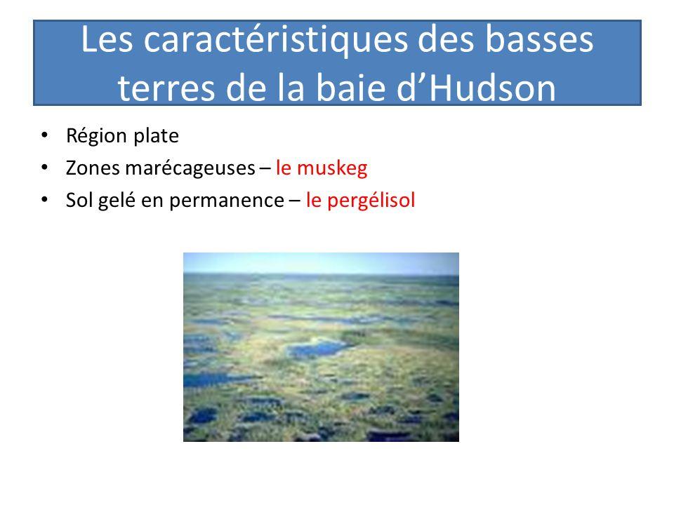 Les caractéristiques des basses terres de la baie d'Hudson