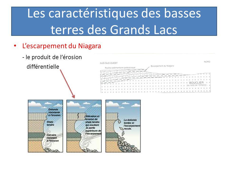 Les caractéristiques des basses terres des Grands Lacs