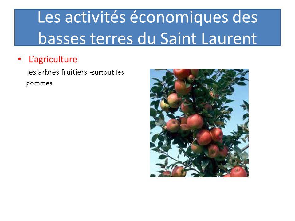 Les activités économiques des basses terres du Saint Laurent