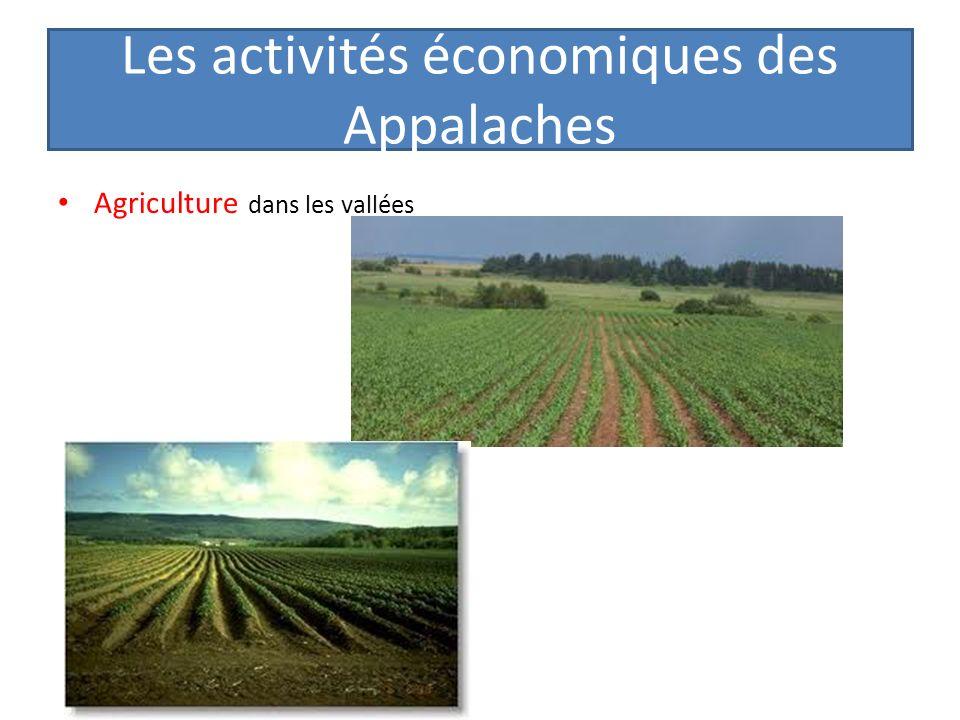 Les activités économiques des Appalaches