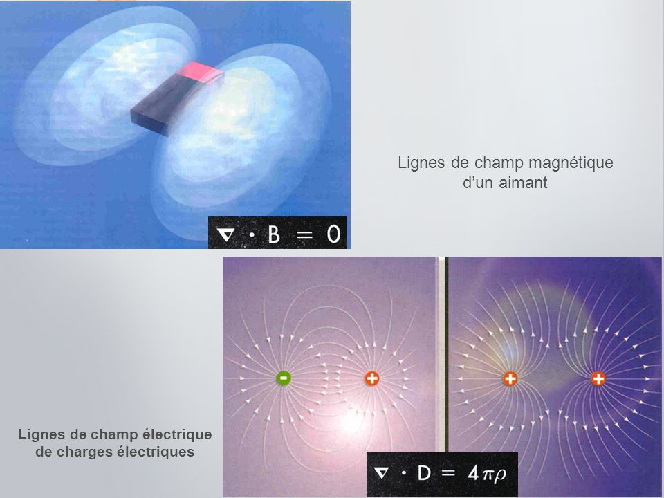 Lignes de champ électrique de charges électriques