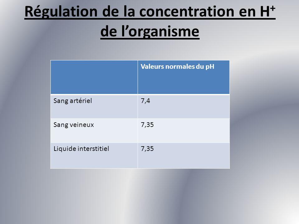 Régulation de la concentration en H+ de l'organisme