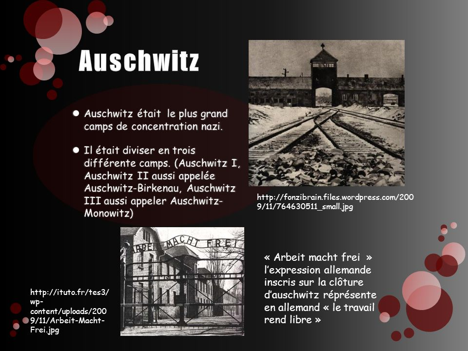Auschwitz Auschwitz était le plus grand camps de concentration nazi.