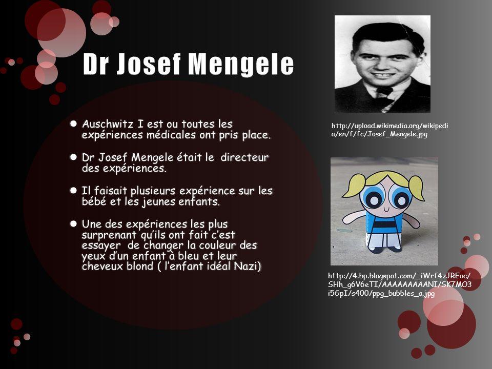 Dr Josef Mengele Auschwitz I est ou toutes les expériences médicales ont pris place. Dr Josef Mengele était le directeur des expériences.