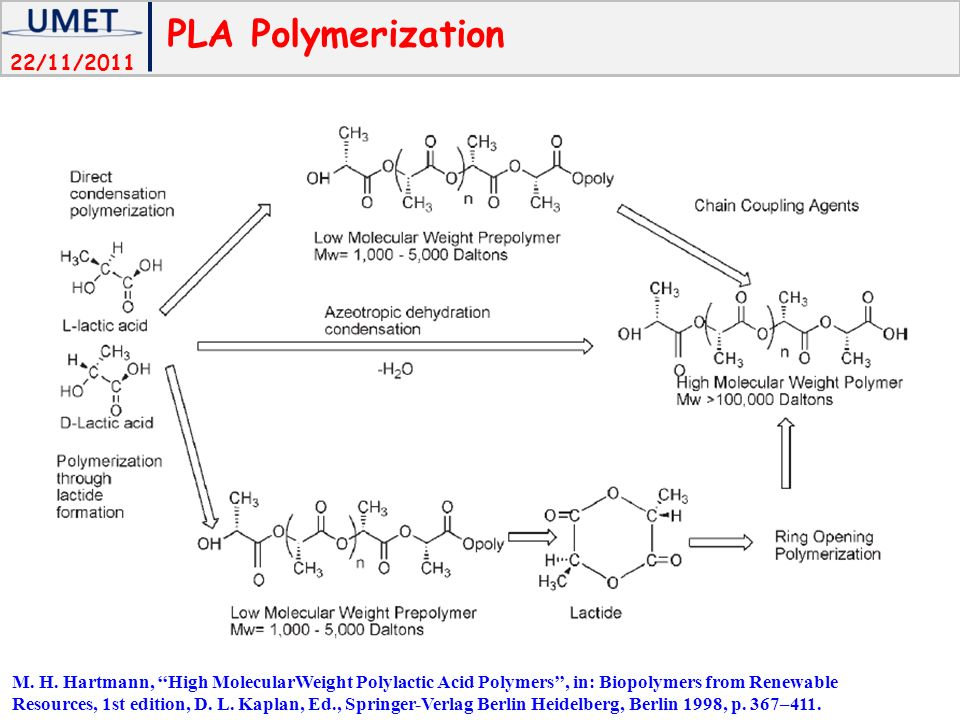 PLA Polymerization