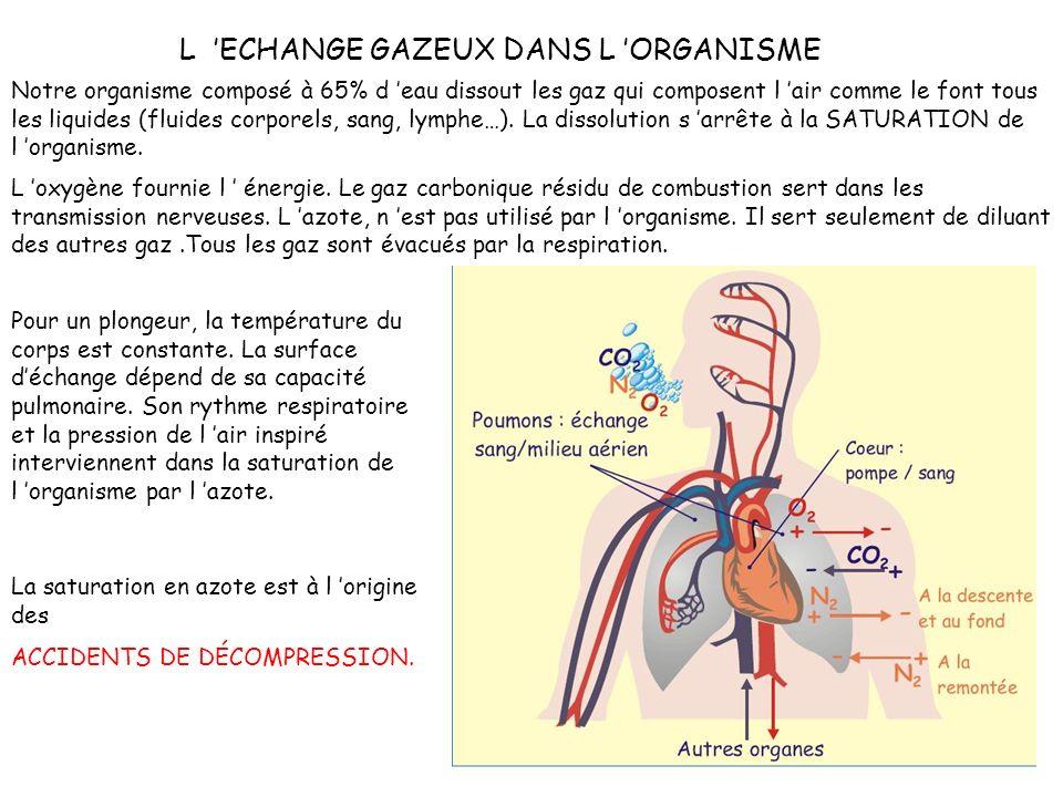 L 'ECHANGE GAZEUX DANS L 'ORGANISME