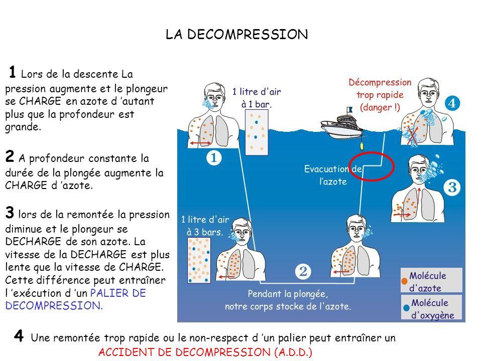 LA DECOMPRESSION 1 Lors de la descente La pression augmente et le plongeur se CHARGE en azote d 'autant plus que la profondeur est grande.