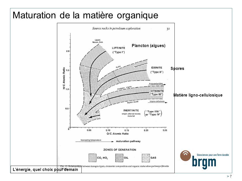 Maturation de la matière organique