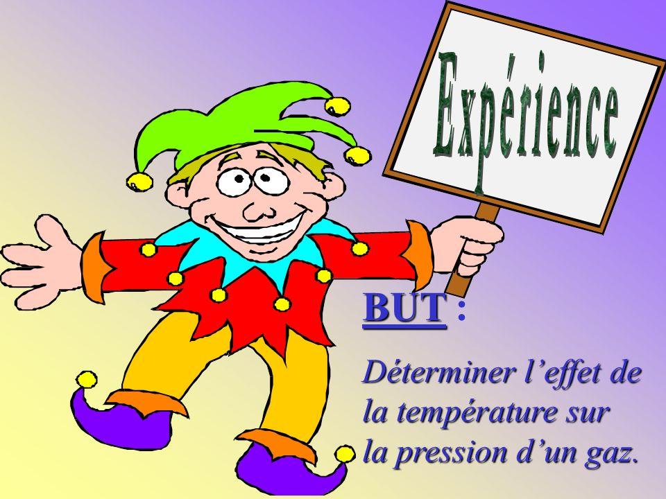 Expérience BUT : Déterminer l'effet de la température sur la pression d'un gaz.