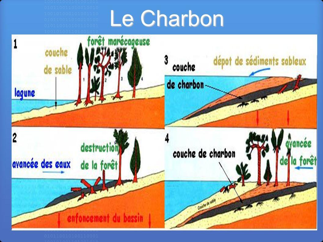 Le Charbon