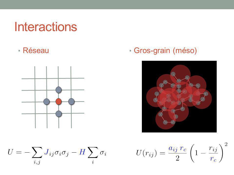 Interactions Réseau Gros-grain (méso)