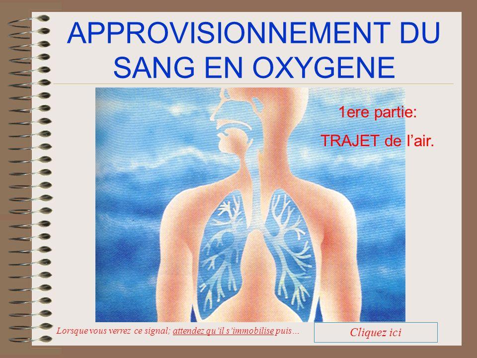 APPROVISIONNEMENT DU SANG EN OXYGENE