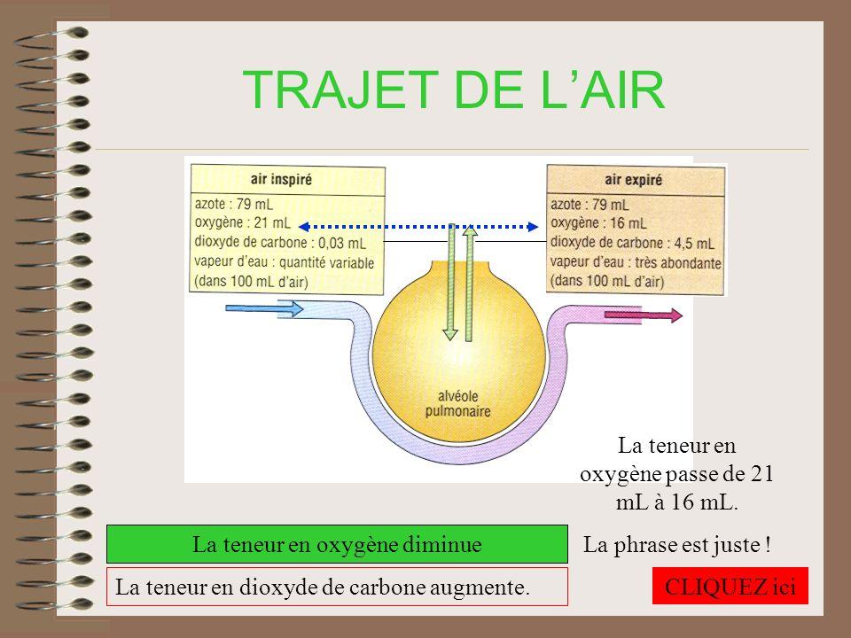 TRAJET DE L'AIR La teneur en oxygène passe de 21 mL à 16 mL.